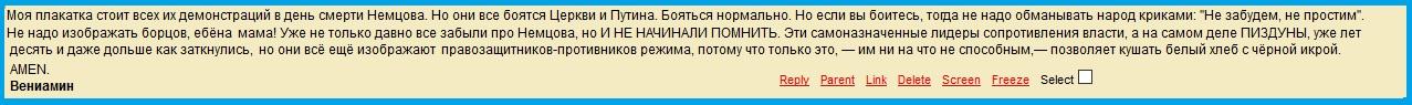 Коммент, Павленский, (3).