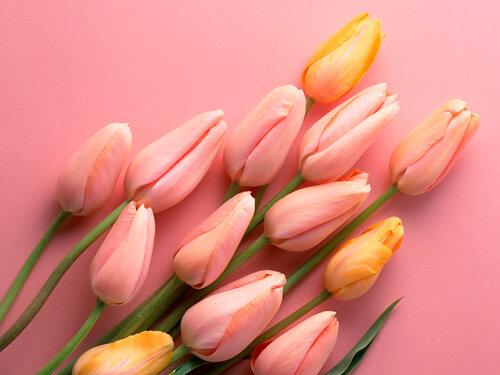 Символика некоторых цветов