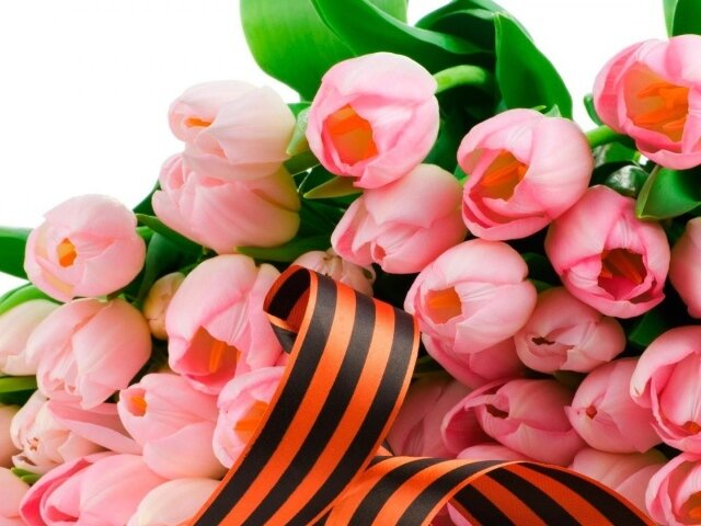 Holidays___May_9_Tulips_in_the_May_9_Victory_Day_078785_29.jpg