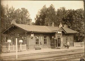 Вид пассажирского здания на станции. Санкт-Петербургская губ. Мшинская ст.