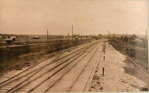 Вид станции и путей (со стороны Ковно). Виленская губ. Олита ст.