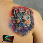 Алексей Кот  89851164240    tattoo-tv.ru   vk.com/tattoo_kot