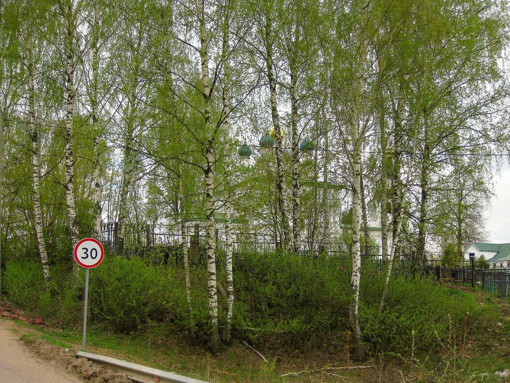 Церковь и сельское кладбище, Рождественно-Суворово