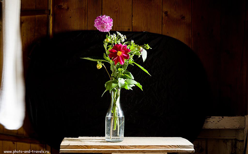 8. Как снимать цветы на черном фоне. Слева - полотенце. Фотоуроки для новичков.