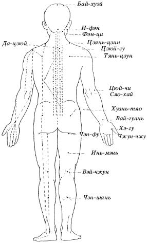 Схема некоторых акупунктурных точек человека.