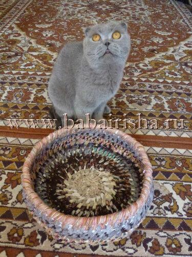 козинка для кошки