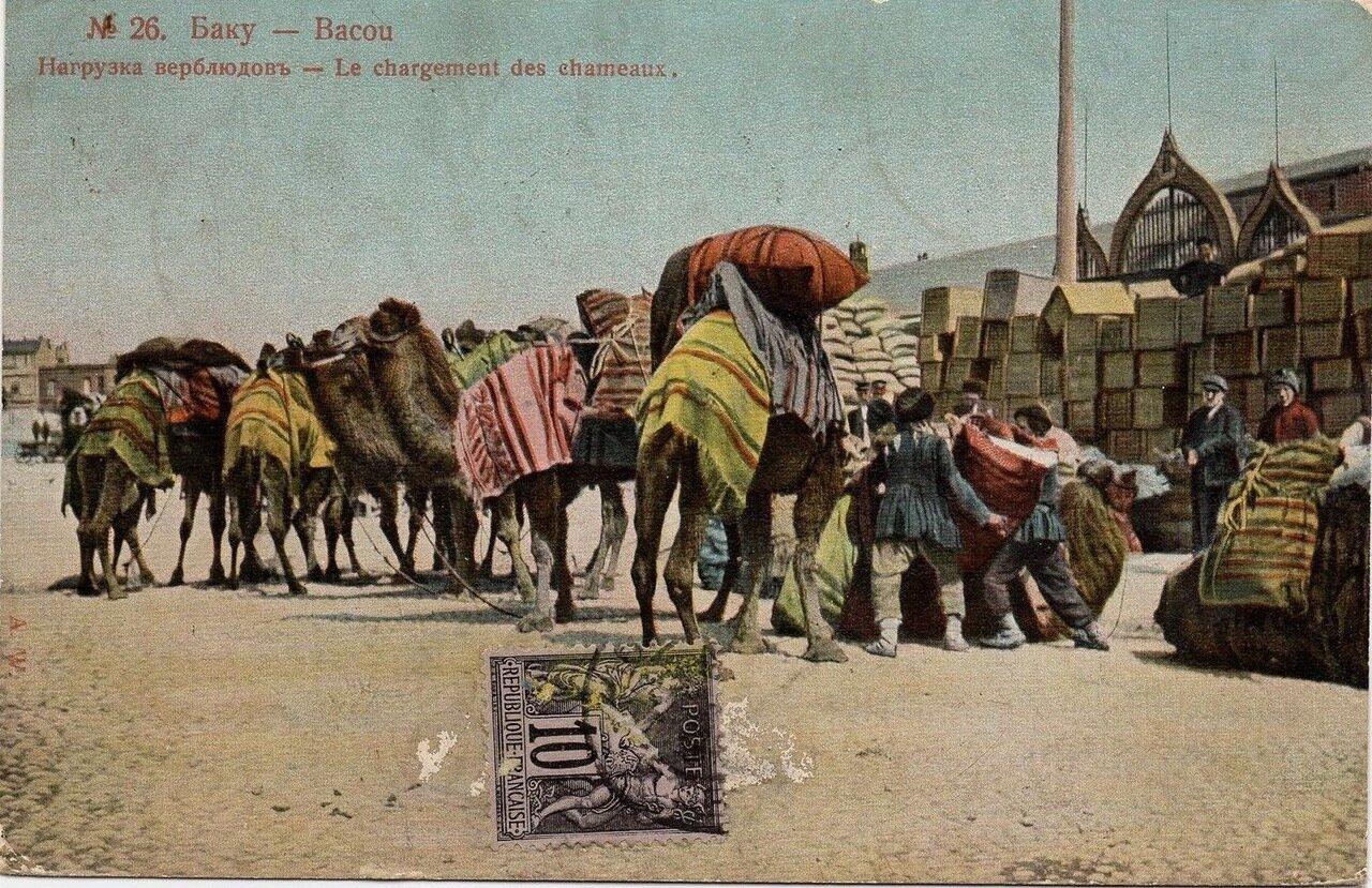Нагрузка верблюдов