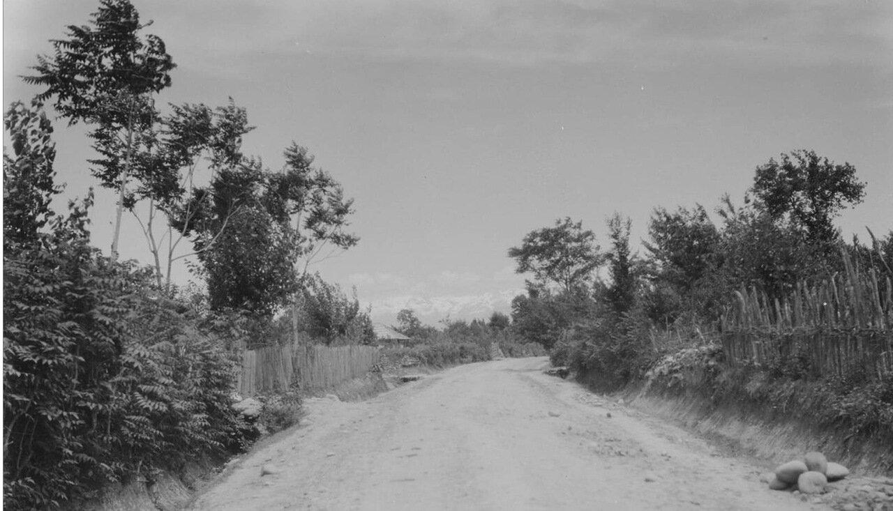 Зугдиди. Дорога в окрестностях города