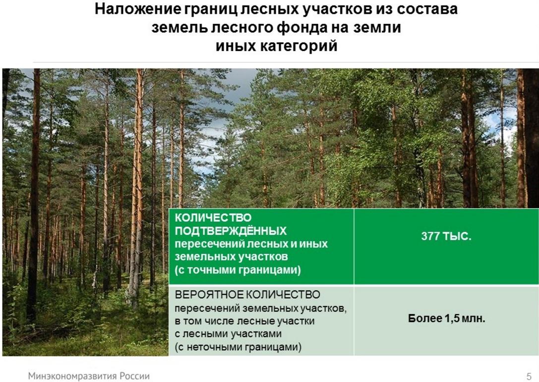 Земли лесов застроили снт как узаконить