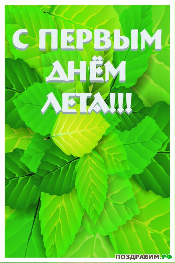 С первым днем лета! Зеленая листва