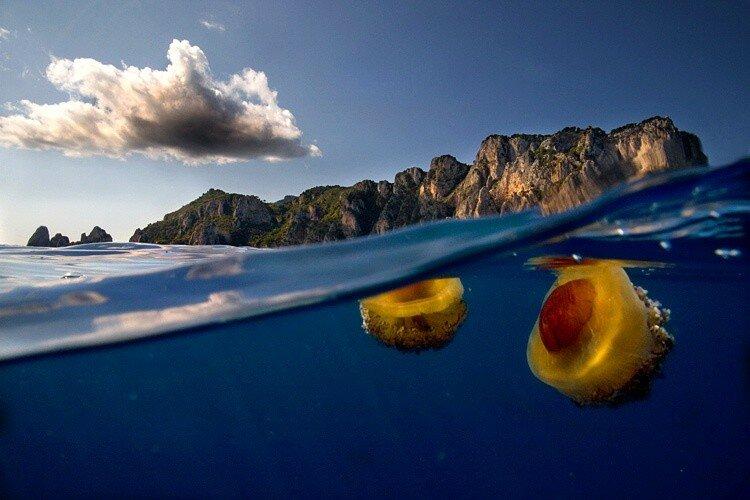 Между небом и водой (фото)