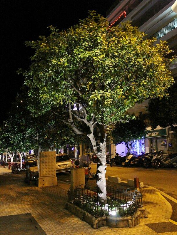 Night Menton. Jardins Biovès