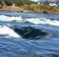 Морские чудеса Норвегии.  Где находится Мальстрим?