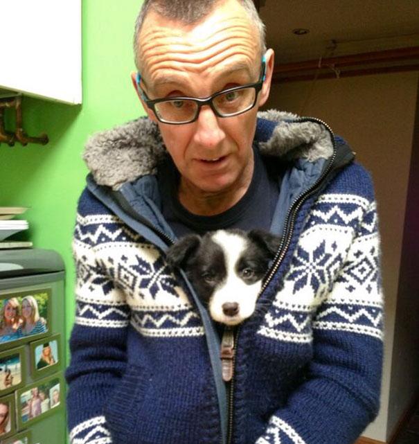 «Папа говорил, что не хочет собаку».