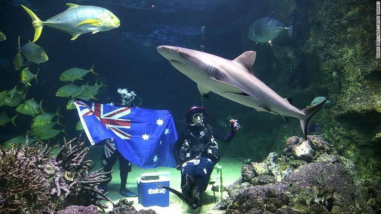 Австралия — на восьмом месте рейтинга. Ее паспорт позволяет попасть на территорию 169 стран мира без