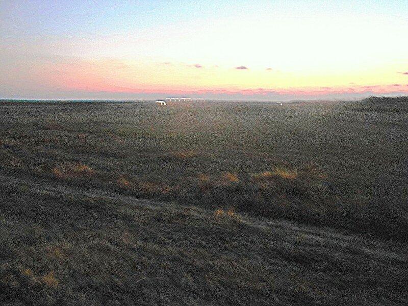На закате, до Ахтарей 7 км ... DSCN9012.JPG
