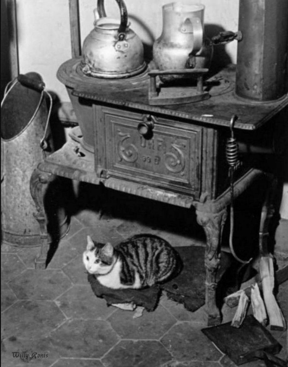 1947. Кошка у плита, Париж