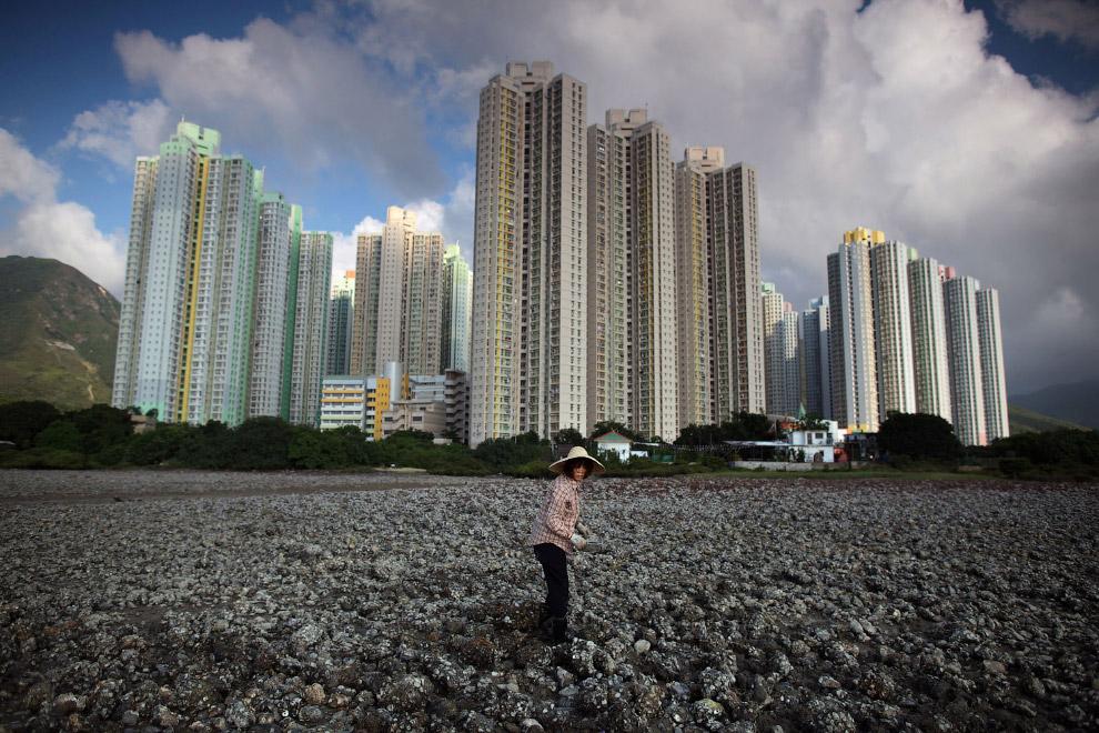 5. Округ Тайпоу. Перед статуей — роскошные и дорогие малоэтажные дома, жить в которых может поз