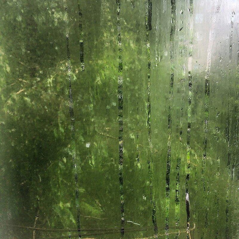 Под игом дождя