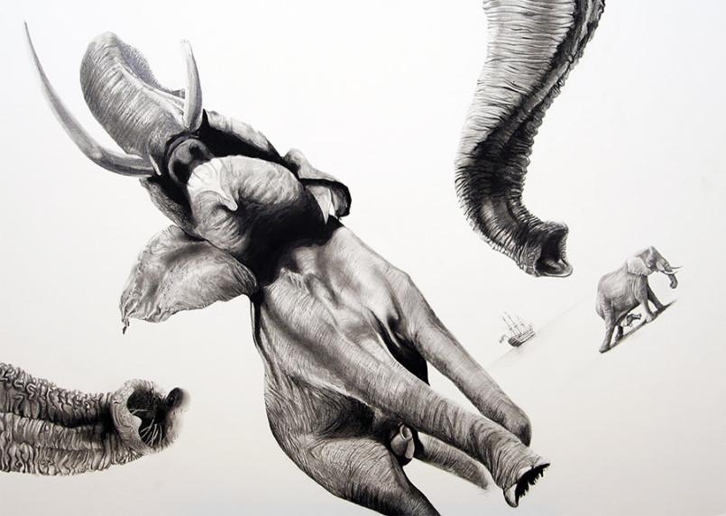 Illustrations by Martin Kalanda