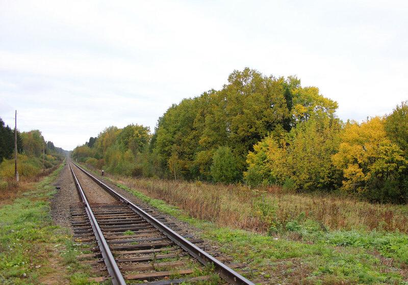 Переезд на перегоне Кашин - МЮД, вид на Сонково. 210 км 8 пк
