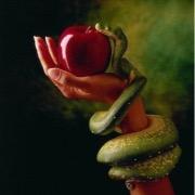 Яблоко в руке