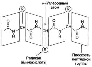 https://img-fotki.yandex.ru/get/51393/158289418.3bd/0_1700d0_179dd230_orig.jpg