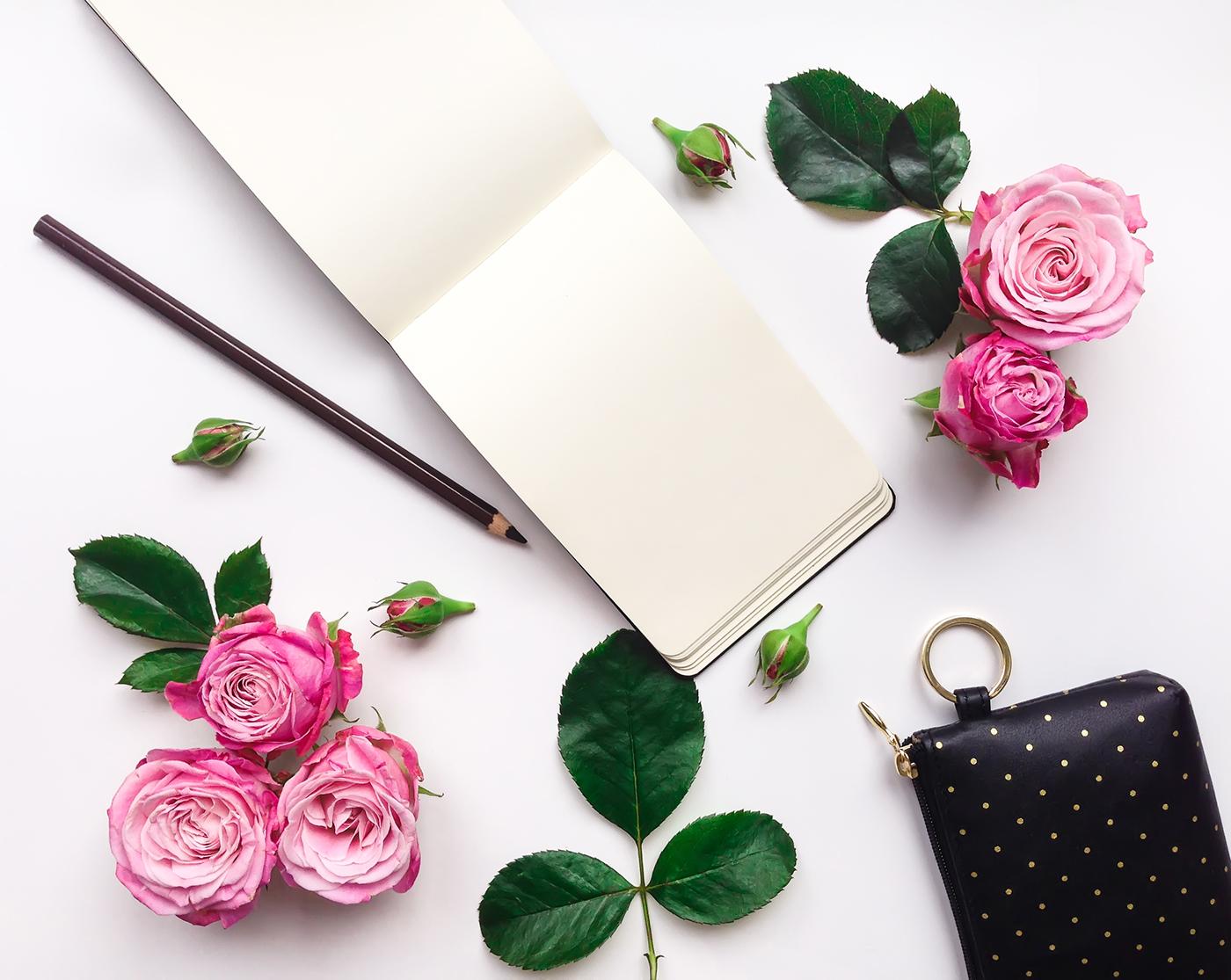 Розовые розы / Фото Алена Пищулова