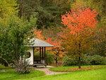 Японский сад осенью
