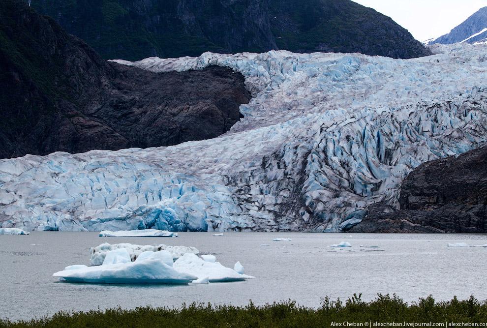 20. Фауна Аляски — предмет многочисленных туров. Очень многие из них стоят неоправданно дорого,