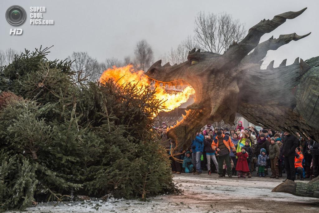 Германия. Фурт-им-Вальд, Бавария. 24 января. Роботический дракон в средневековом стиле сжигает р