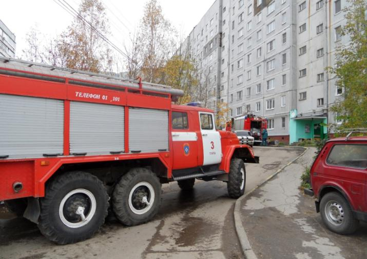 Пофакту погибели 3-х человек впроцессе пожара вНовомосковске идет проверка