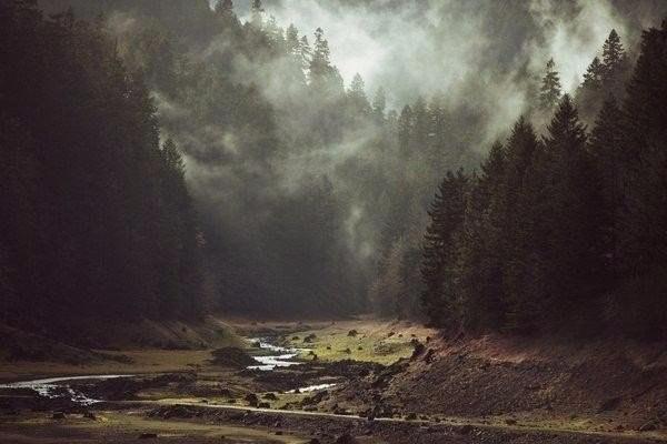 Неблагоприятные погодные явления вызваны атмосферными реками— Ученые
