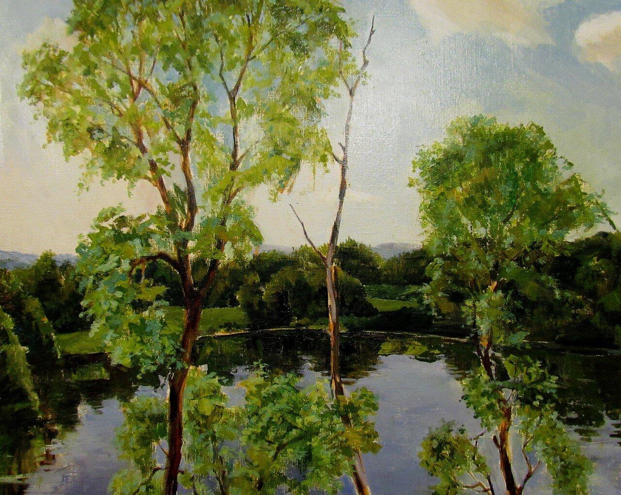 н.бондарчук (г.гродно, белоруссия).озеро в  тарханах.jpg