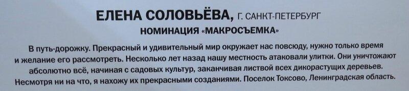 https://img-fotki.yandex.ru/get/515846/140132613.6a5/0_240aeb_58a31d_XL.jpg