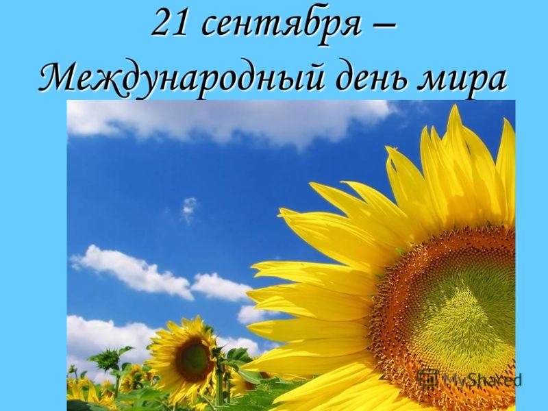 21 сентября — Международный день мира. Подсолнухи