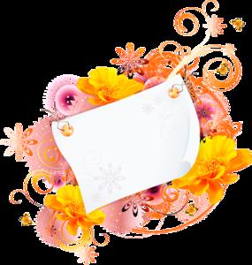 оранжевые карточки
