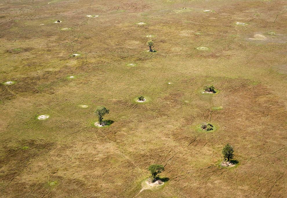 5. Более крупные острова образуются путём намыва донного грунта в результате перекрытия канала или р