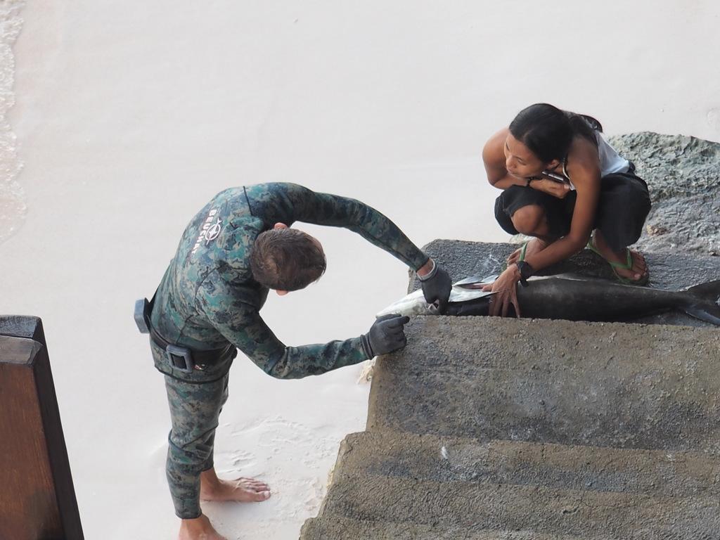 Сулавеси: Бунакен, вокруг Манадо, Бира