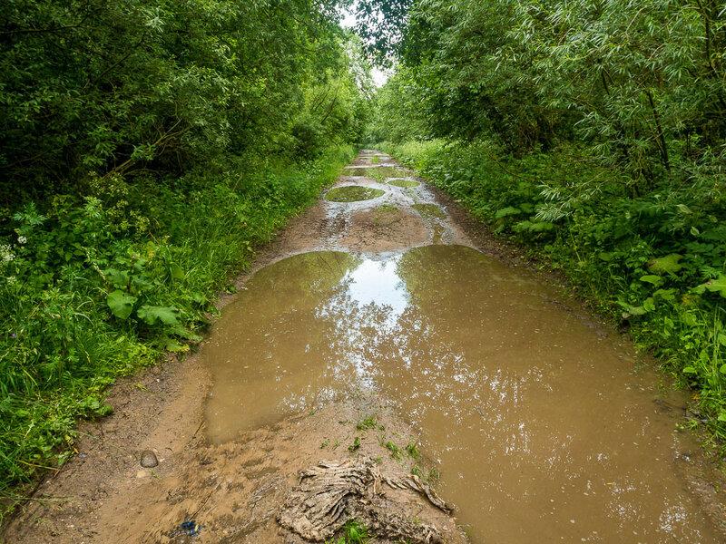 Тонкое внутреннее чутьё подсказало мне: не стоит сегодня идти на болото.
