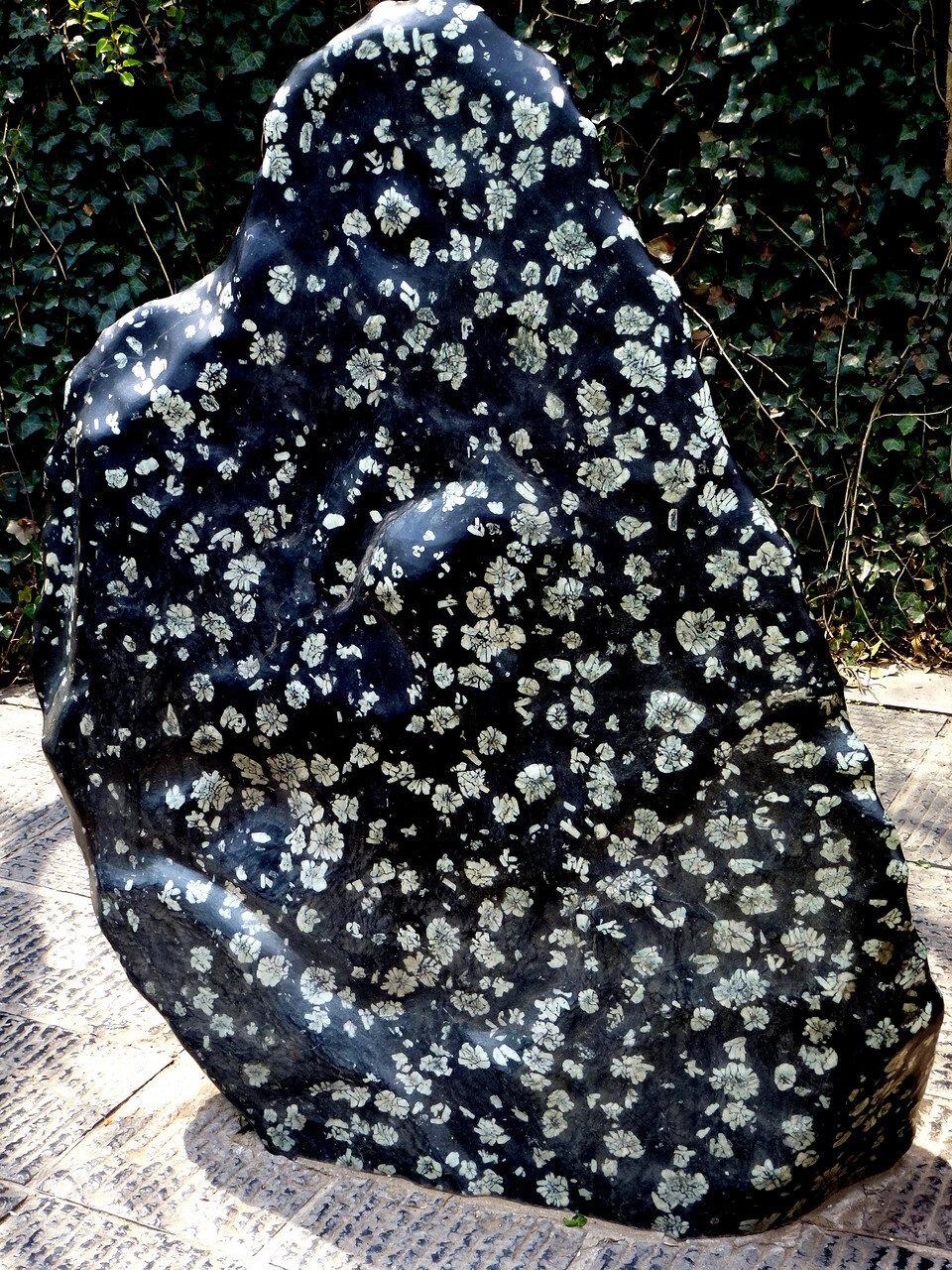 Пионный камень Лояна