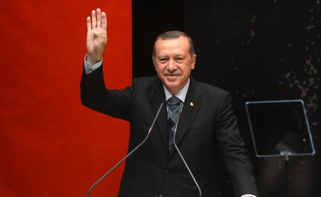 Руководитель германской партии сравнил режим Эрдогана сранним Гитлером