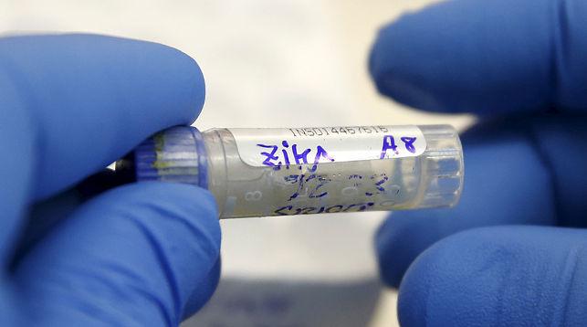 Количество зараженных вирусом Зика вамериканском штате Флорида неумолимо растет