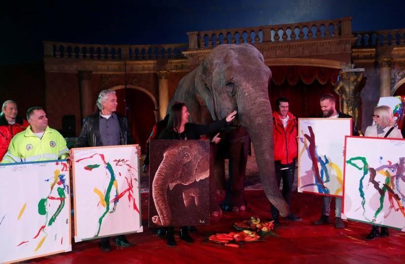 Картины слонихи-художницы продают по $150