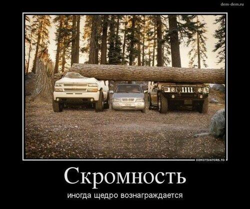 121483341_y24coj20vcq.jpg