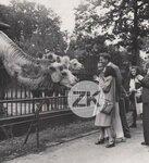 Piaf, Charles Trenet. Berlin Zoo 1943