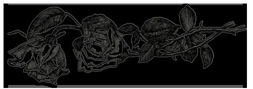 чёрно-белые розы