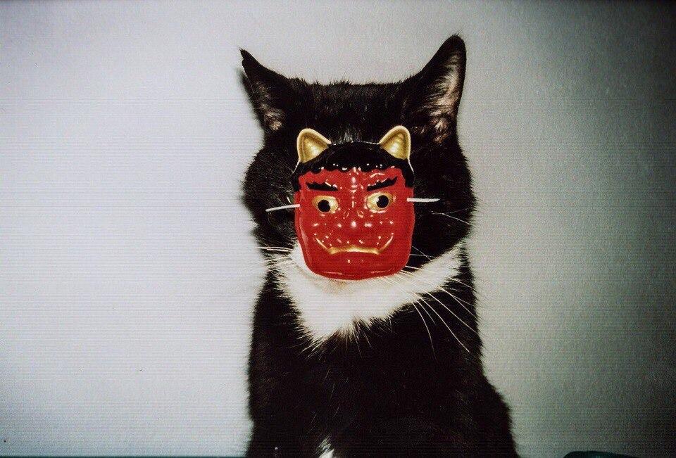 Дикий-дикий Хэллоуин