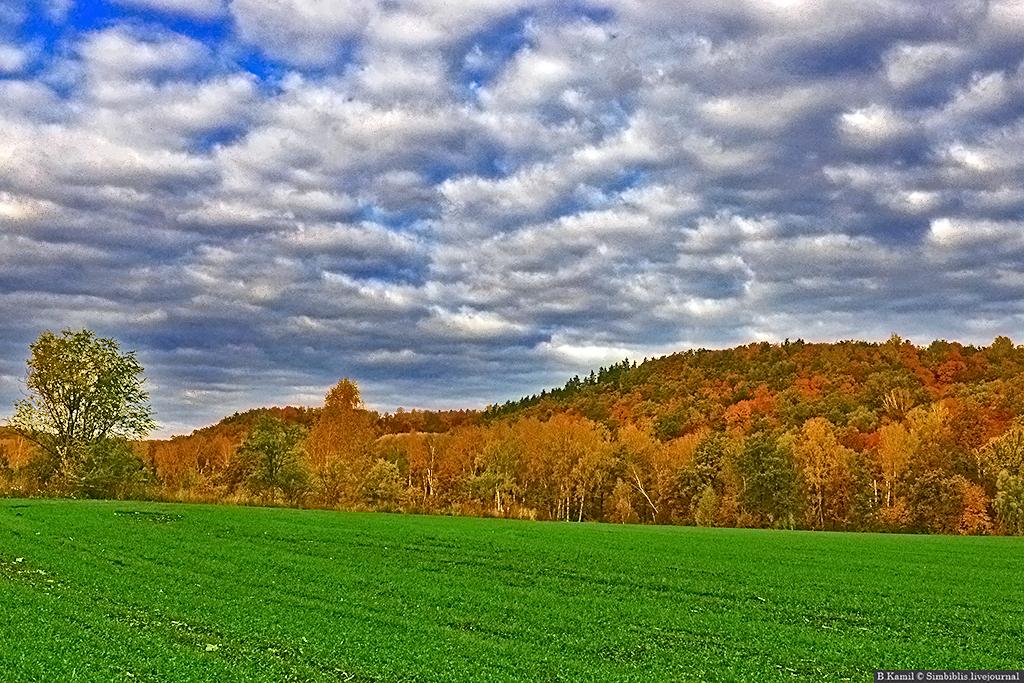 Осень в Ульяновской области