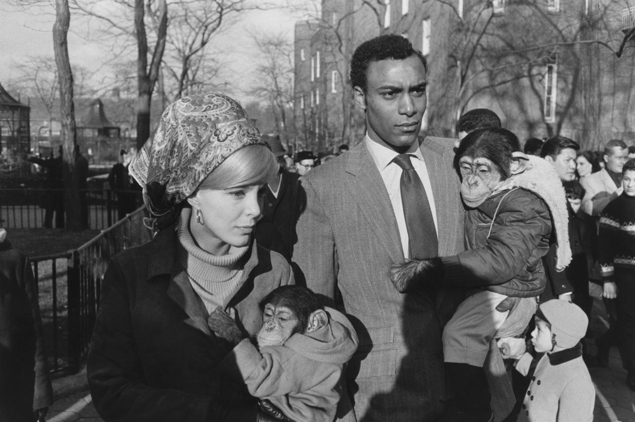 1967. Зоопарк Центрального парка
